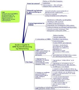Guide A kapitel 9. ERM Systemevaluering og etterprøving ARIAL (2)