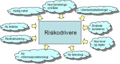 risikodrivere